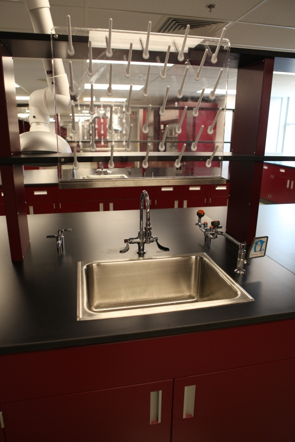 Steel Sink with Eyewash Pegboard
